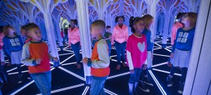"""In """"Numbers in Nature,"""" guests can navigate a seemingly infinite 1,800-square-foot mirror maze, which features a pattern of repeating triangles. (J.B. Spector / Museum of Science and Industry Chicago)"""