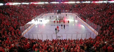Bulls and Blackhawks have fans optimistic for playoffs