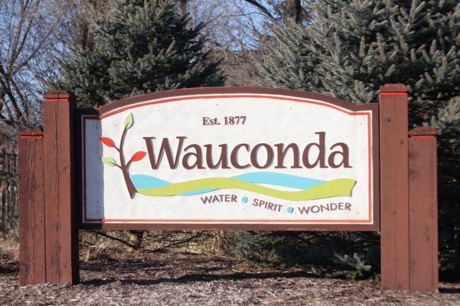 Wauconda+is+a+small+Northwestern+suburb+of+Chicago+and+is+home+to+newfound+fame+after+%22Black+Panther%27s%22+release+and+the+immense+success+that+followed.+%28Rachel+Fernandez+%7C+The+DePaulia%29