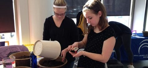 Freshmen Sammie Dinning and Megan Kerber plant herb seeds at the Ray. Both are passionate about the environment, and Kerber considers recycling more than a chore; she collects bottles around her Chicago neighborhood because her alderman doesn't provide recycling bins. (Megan Deppen / The DePaulia)