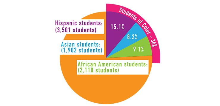 Student body most racially diverse in DePaul history
