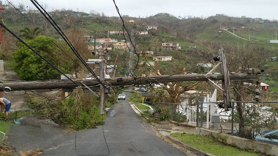 Telephone poles block many of the roads in Puerto Rico, such as this one in Dorado. (Photo courtesy of Hugo Infante)