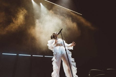 Lorde performing during one of her tour stops earlier this year. Her concerts have become the subject of great excitement and are relatively rare for a star of her standing.  (Image courtesy of Facebook, Lorde)