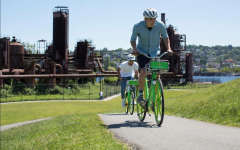 Chicago's South Side serving freshly-squeezed LimeBikes