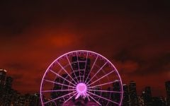 Navy Pier to host lakeside love search