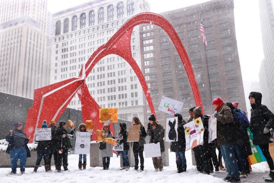 Protestors gather in the Federal Plaza on Jan. 19 for the Young Women's March Rally. This rally was done in place of the national Women's March, but still echoed the same message of equal rights.