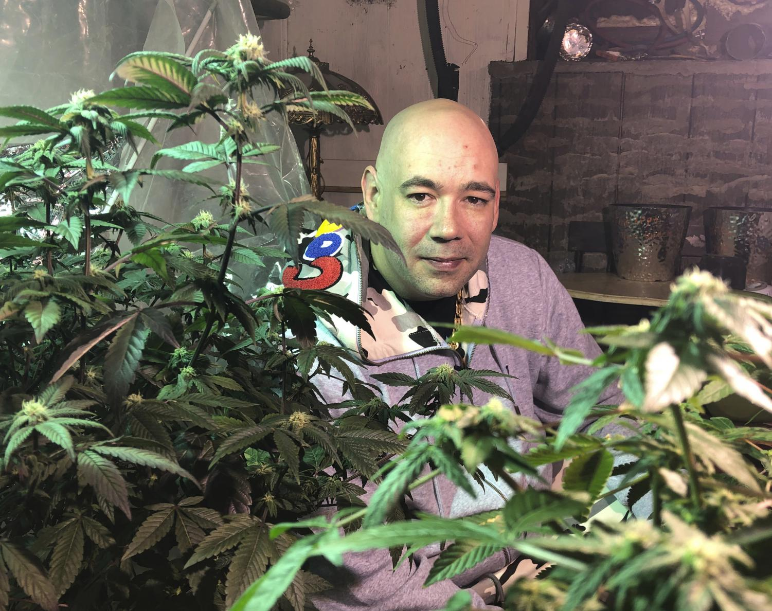 In this April 8, 2019 photo, Bernie Barriere poses for a photo as he tends to two marijuana plants he legally grows in a basement in Bennington, Vt.