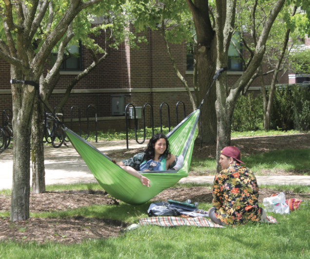 Students gather on the quad, hammocking and picnicking on a recent sunny day. Most universities have quads that are used for events and just hanging out.