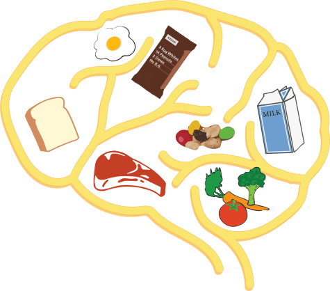 Brain Food: Maintaining focus, retaining information more difficult without proper fuel
