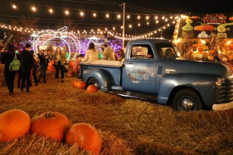 Jack's Pumpkin Pop-up, which is located on Elston Avenue, offers fall food, drinks, games and photo opportunities in a pumpkin patch themed experience.