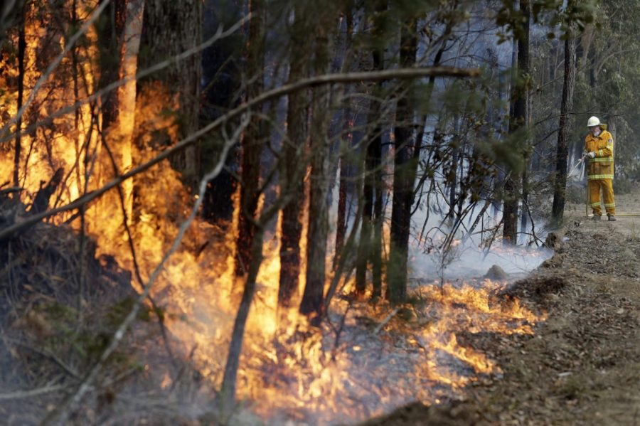 Australian bushfires point to dire future for climate crisis