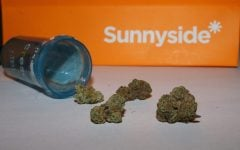 Chicagoans swarm dispensaries in first week of recreational cannabis sales