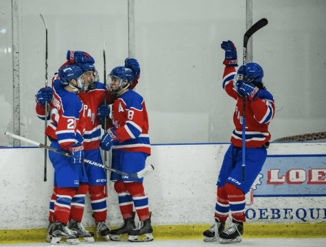 The DePaul hockey team celebrates after making it to the playoffs.