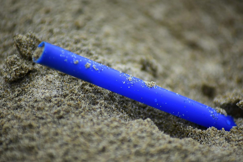 A plastic straw on a beach.