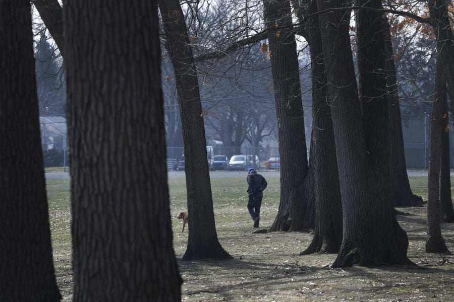 A dog is walked, Wednesday, March 25, 2020, in Oak Park, Mich. Health care and government officials have been urging people to get outside and shake off the COVID-19and coronavirus blues for both our mental and physical health.