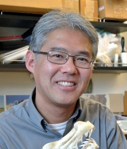 Dr. Kenshu Shimada, who completed a study finding patterns in birth size, continued growth and reproductive mode of the extinct Megalodon shark.