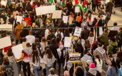 Protestors gather in the streets downtown, holding signs in solidarity with Palestine.