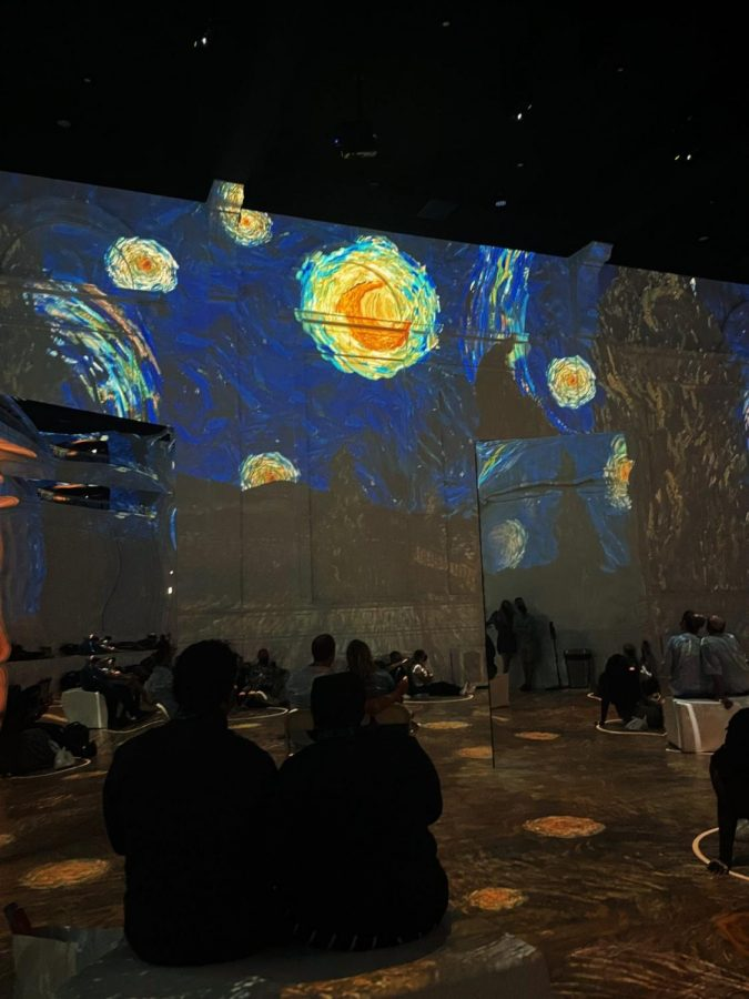 Van Gogh's life work brought back to life in immersive art experience