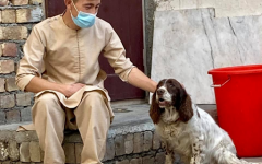 Man petting a lost dog that the Kabul Small Animal Rescue took care of. Courtesy of Kabul Small Animal Rescue's Facebook page.