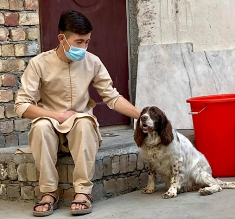 Man petting a lost dog that the Kabul Small Animal Rescue took care of. Courtesy of Kabul Small Animal Rescues Facebook page.